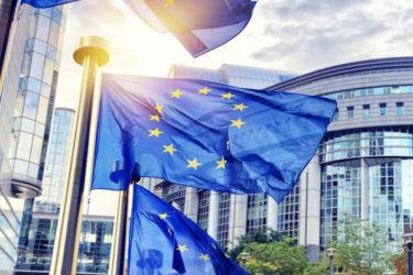 Die Societas Europaea (SE) – Überblick über die Europäische Aktiengesellschaft